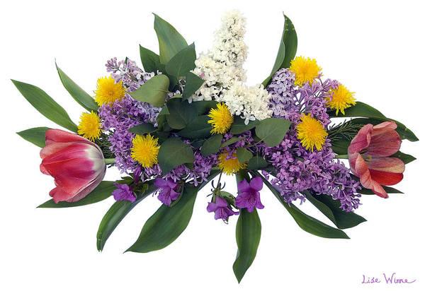 Digital Art - Tulip Lilac And Dandelion Bouquet by Lise Winne