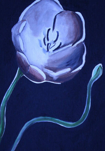 Wall Art - Painting - Tulip Paintings by Mikayla Ziegler