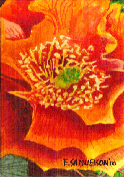 Painting - Tulip Prickly Pear by Eric Samuelson