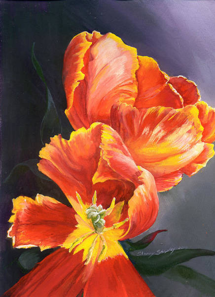 Painting - Tulip Tango by Sherry Shipley