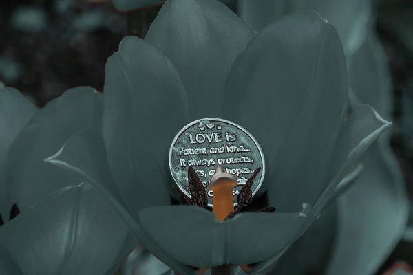 Photograph - Tulip With Prayer by Randy J Heath
