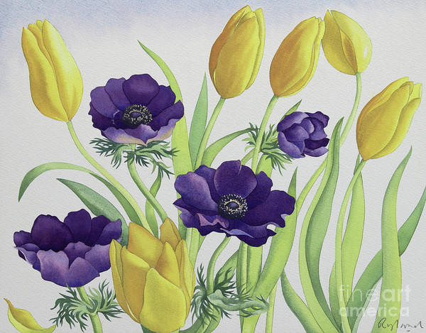 Wall Art - Painting - Tulips And Anemones by Christopher Ryland