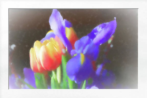 Photograph - Tulips And Iris by Natalie Rotman Cote