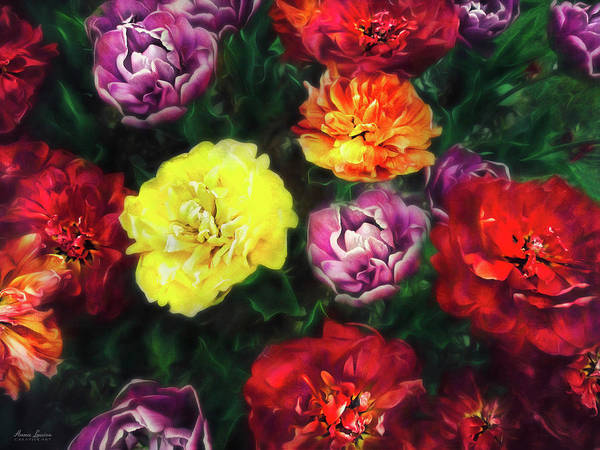 Photograph - Tulips Deeply by Anna Louise