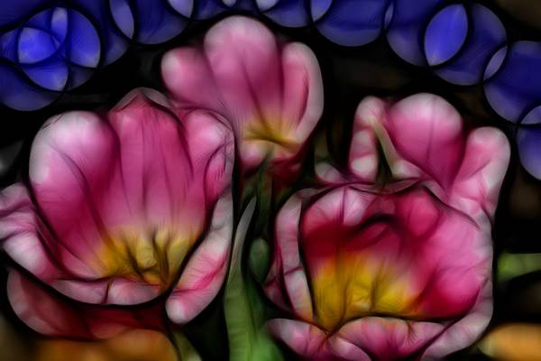 Tulips Mixed Media - Tulips For My Sweetie. by Kevin  Sherf