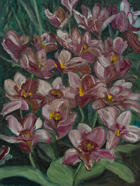 Painting - Tulips From Holland by Kathy Knopp