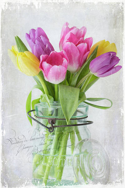 Tulipa Photograph - Tulips In A Jar by Cindi Ressler