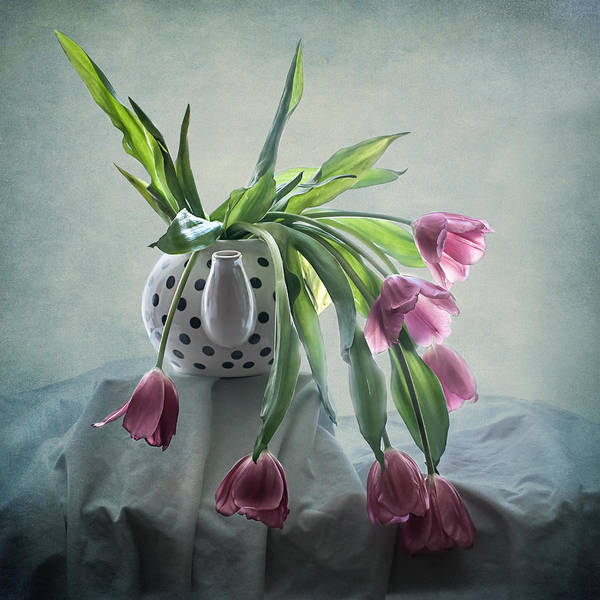 Photograph - Tulips In A Teapot  by Maggie Terlecki
