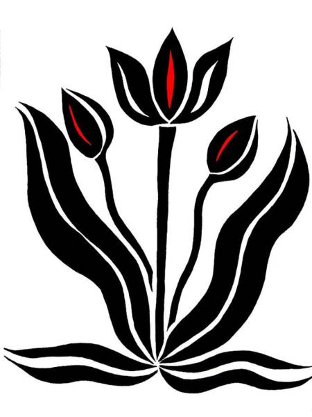Drawing - Tulips In Abstract by Beth Akerman