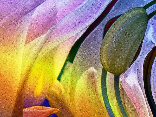Tulips Secret Art Print