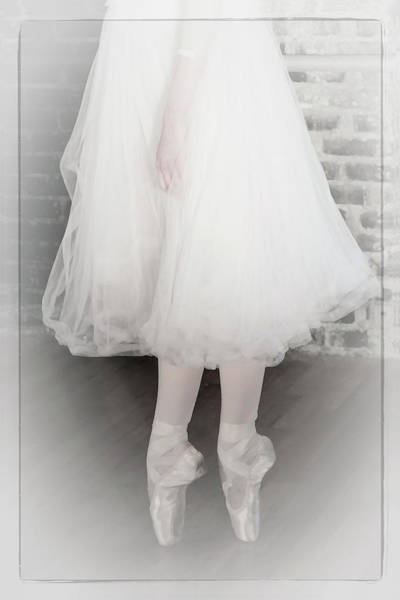 Photograph - Tulle And Pointe by Wes and Dotty Weber