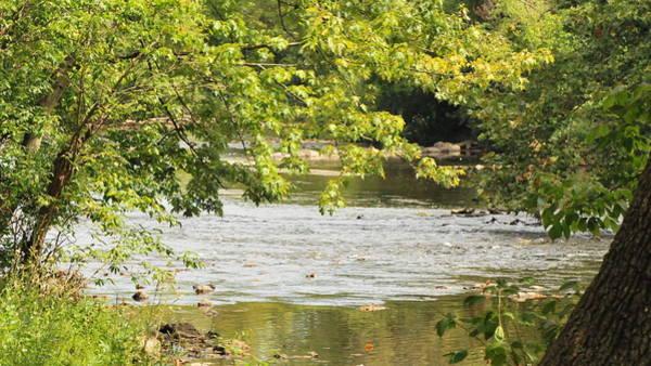Tulpehocken Creek Photograph - Tulpehocken Creek by Michelle DiGuardi