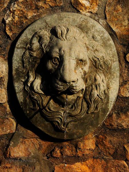 Photograph - Tulsa Rose Garden Lion Fountain #2 by Susan Vineyard
