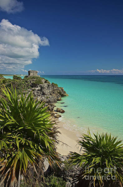 Photograph - Tulum Ruins On The Yucatan Peninsula Along The Caribbean Sea In The State Of Quintana Roo, Mexico by Sam Antonio Photography