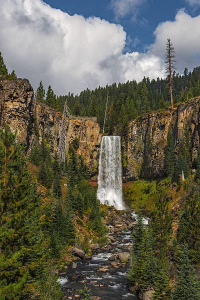 Photograph - Tumalo Falls by Loree Johnson