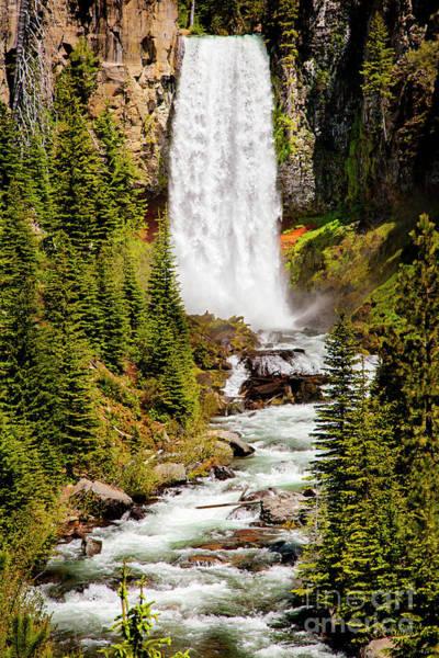 Photograph - Tumalo Falls Oregon by David Millenheft