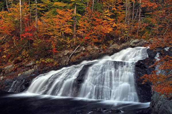 Photograph - Tumbling New Hampshire Profile Waterfall by Juergen Roth
