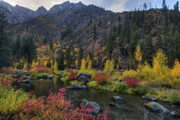 Photograph - Tumwater Canyon Autumn Spectacle by Mark Kiver