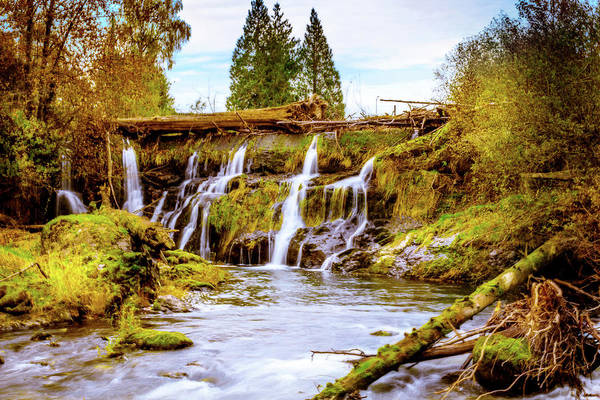Photograph - Tumwater Falls Park by Barry Jones