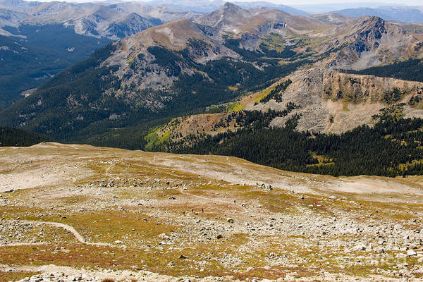 Photograph - Tundra And Alpine Scenery On Mount Yale Colorado by Steve Krull