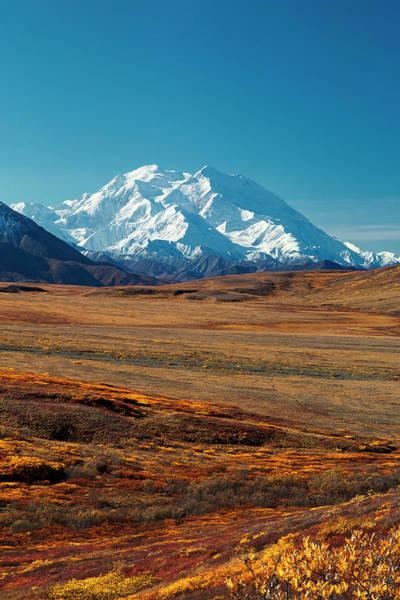 Photograph - Tundra  North by Ed Boudreau