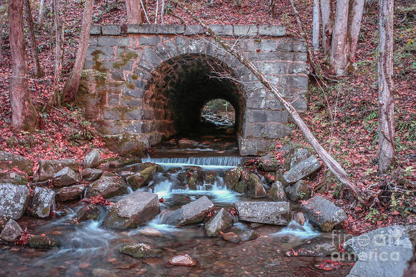 Photograph - Tunnel Culvert #1 by Tom Claud