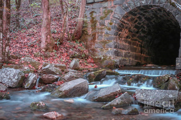 Photograph - Tunnel Culvert #2 by Tom Claud