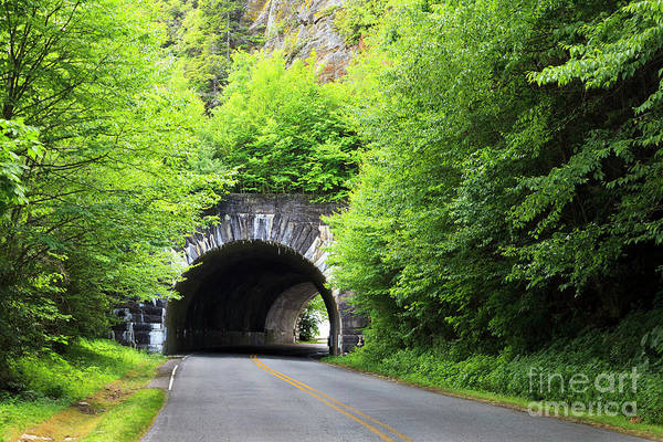 Photograph - Tunnel On The Parkway by Jill Lang