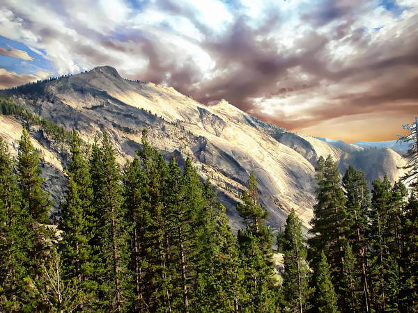 Photograph - Tuolumne Meadows by Anthony Dezenzio