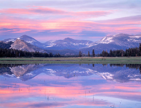 Dome Peak Photograph - Tuolumne River Ca Usa by Panoramic Images