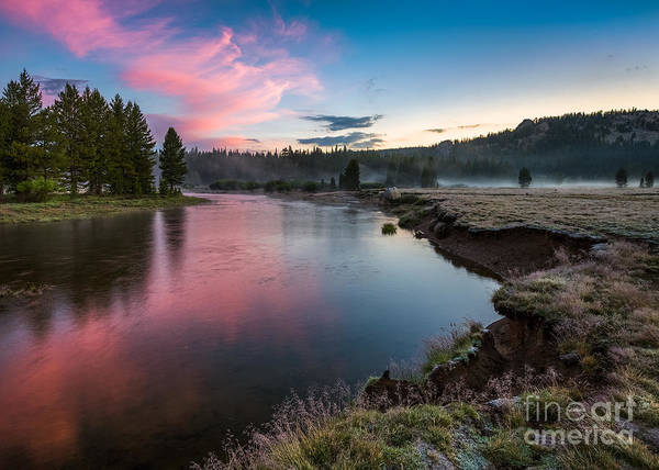 Photograph - Tuolumne Sunrise by Anthony Bonafede