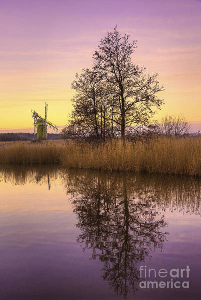 River Scene Mixed Media - Turf Fen Mill At Sunrise by Svetlana Sewell