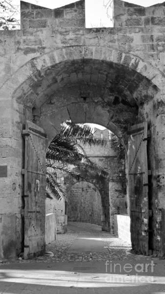 Photograph - Turist Less Rhodos_2 / Greece by Karina Plachetka