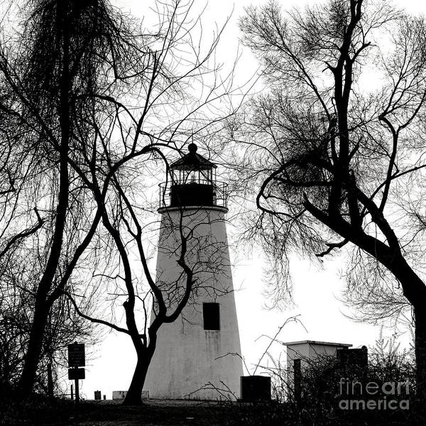 Wall Art - Photograph - Turkey Point Lighthouse by Olivier Le Queinec