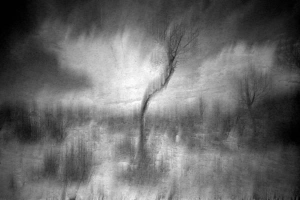 Wall Art - Photograph - Turn Around  by Mark Ross