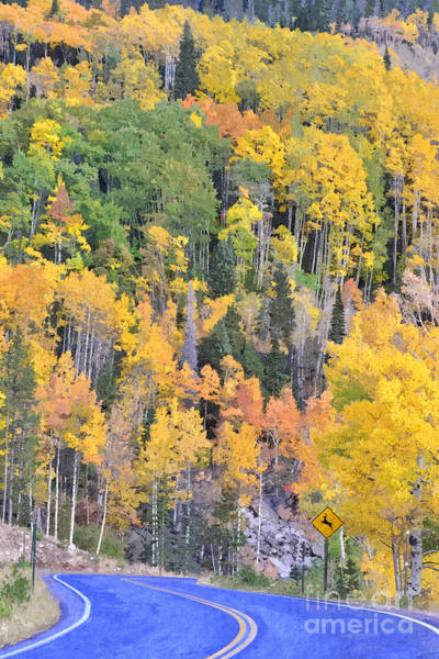 Photograph - Turning Aspens On The Way To Bear Lake - Rocky Mountain National Park Estespark Colorado by Silvio Ligutti