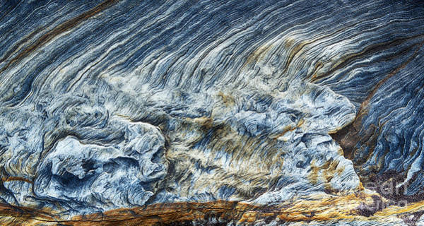 Photograph - Turning Of The Tide by Tim Gainey