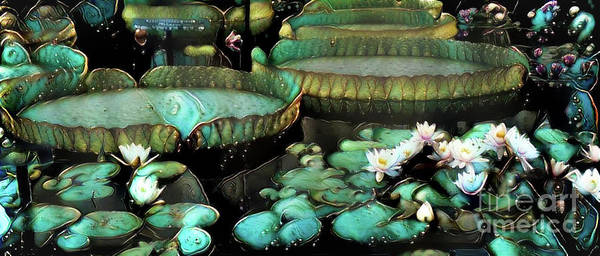 Lilly Pad Digital Art - Turquoise Waterlilies 7 by Amy Cicconi