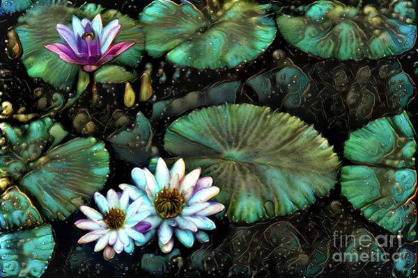 Lilly Pad Digital Art - Turquoise Waterlilies 8 by Amy Cicconi