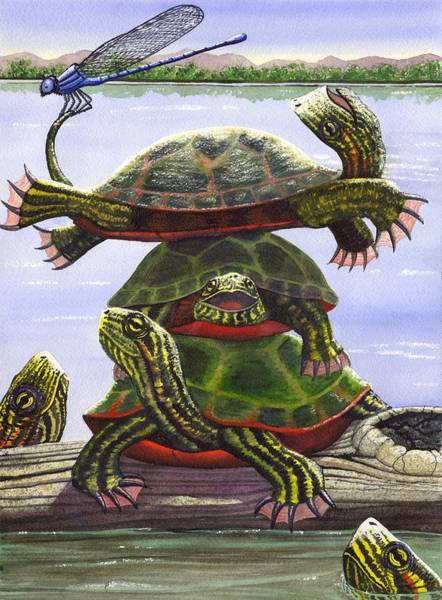 Wall Art - Painting - Turtle Circus by Catherine G McElroy