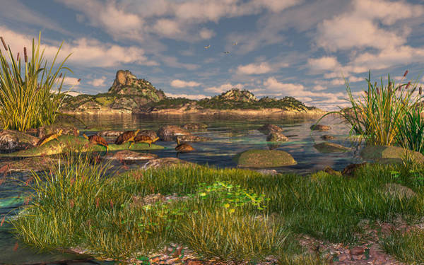Digital Art - Turtle Cove by Mary Almond