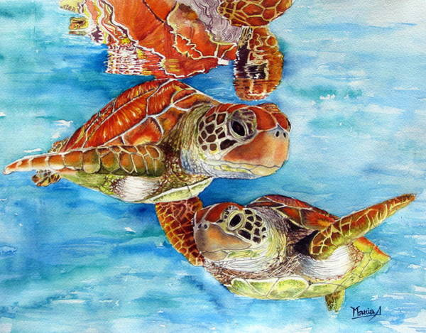 Wall Art - Painting - Turtle Crossing by Maria Barry