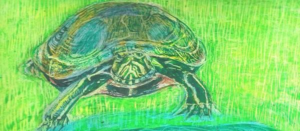 Painted Turtle Drawing - Turtle In Green by Regina WARRINER