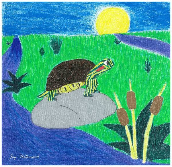 Painting - Turtle by Jayson Halberstadt