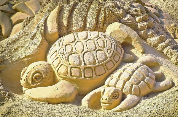Photograph - Turtle Sand Castle Sculpture On The Beach 999 by Ricardos Creations