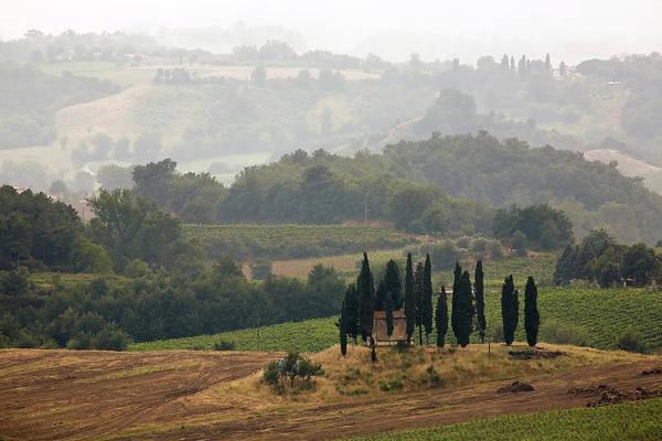 Photograph - Tuscan Landscape by Stefan Nielsen