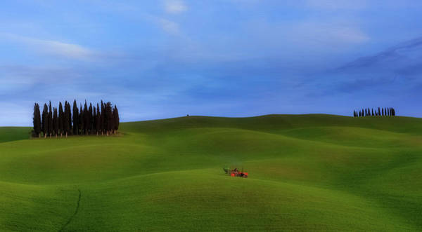 Photograph - Tuscan Landscaping by Rob Davies