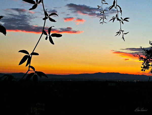 Photograph - Tuscan Sunset by Diana Haronis