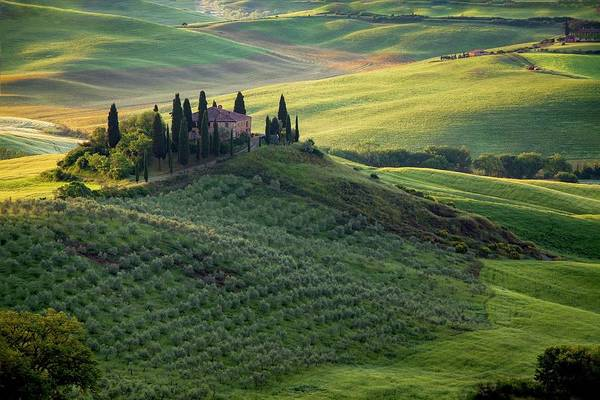 Photograph - Green Hills Of Val De L' Orca Tuscan Villa by Harriet Feagin