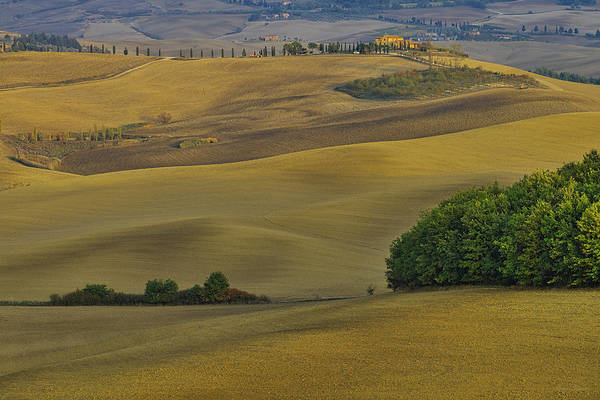 Photograph - Tuscany Fields In Autumn by Ivan Slosar